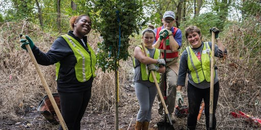 Volunteer: Community Tree Planting - Heritage Island
