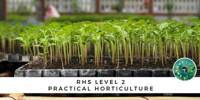 RHS Level 2 Practical Horticulture