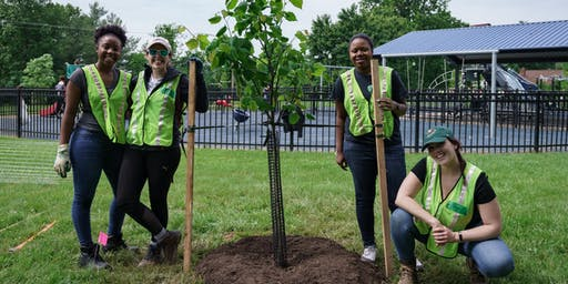 Volunteer: Community Tree Planting - Virginia Ave. Park