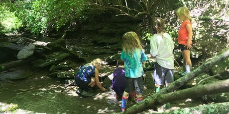 Integrating Nature Into The Classroom And The Classroom Into Nature tickets