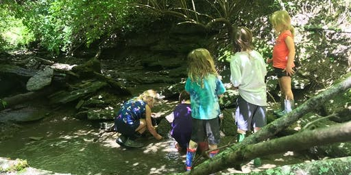 Integrating Nature Into The Classroom And The Classroom Into Nature