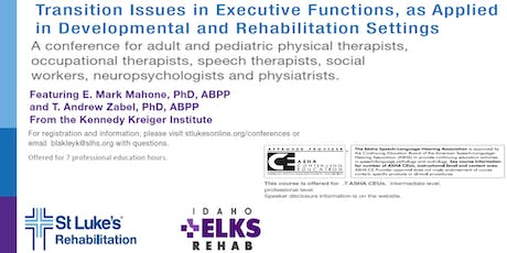 Transition Issues in Executive Functions, As Applied in Dev/Rehab Settings tickets