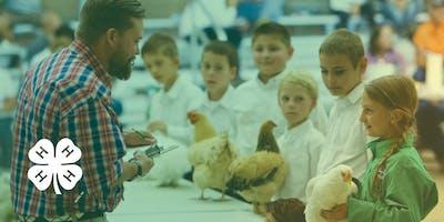 4-H Junior Livestock Auction