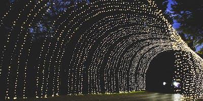 Butch Bando's Fantasy of Lights