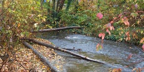 Our Land Our Water: Stream Stewardship & Restoration Tour tickets