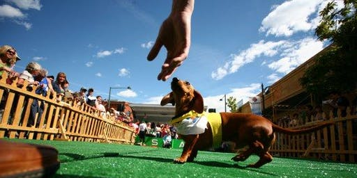 Denver Oktoberfest:  14th Annual Long Dog Derby