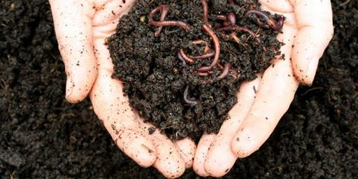 Composting in the Classroom