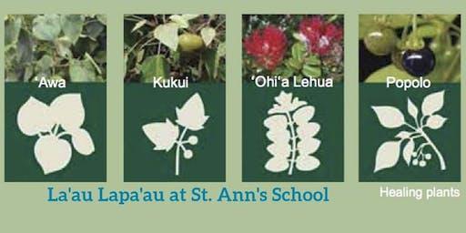 Lā'au Lapa'au with Kumu Cody at St. Ann's School
