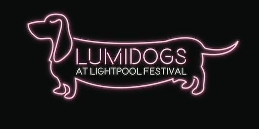 Lumidogs Workshop