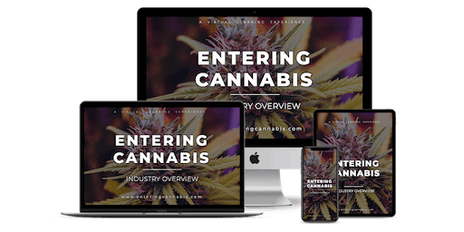 Entering Cannabis: Industry Overview - [LIVE Master Class Webinar] - Boston