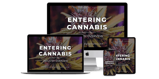 Entering Cannabis: Industry Overview - [LIVE Master Class Webinar] - Barcelona