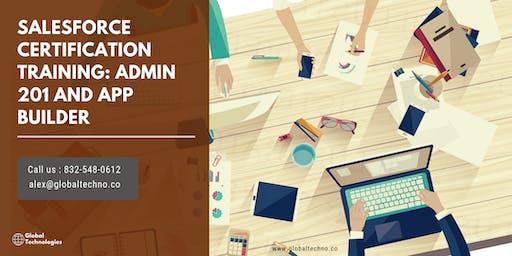Salesforce Admin 201 & App Builder Certification Training in Little Rock, AR