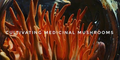 Cultivating Medicinal Mushrooms