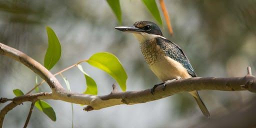 Darebin Creek Bird Survey
