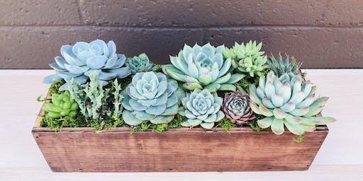 DIY Succulent Centerpiece @ Sweet Digs