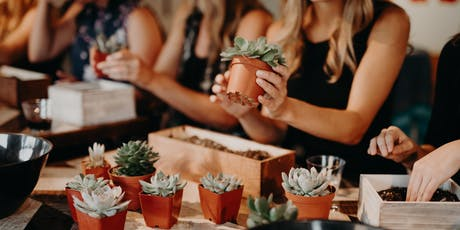DIY Succulent Arrangements- BYOC (Bring your own container) @ Sweet Digs tickets