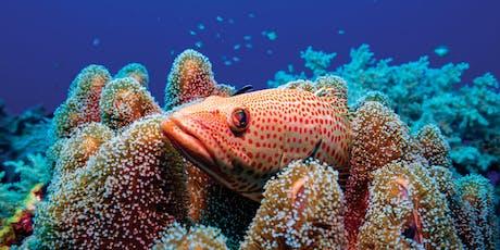 2019 Coral Reef Futures Symposium and Public Forum tickets