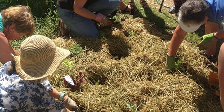Green Living Workshop  - No Dig Gardening at Buttonderry tickets