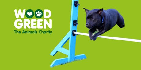 Fun Agility Classes October 2019 - Godmanchester tickets