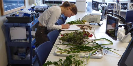 Botany Evening Classes - Canterbury tickets