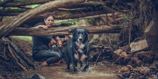 Camp Canis im Lamer Winkel - Bayern So, 20.09.2020 | TEAMSTART