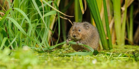 Water Vole Pantry tickets
