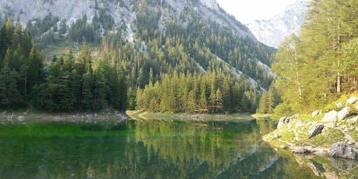 Höhenwanderung Grüner See - Sonnschienalm - Hochschwab - Seewiesen