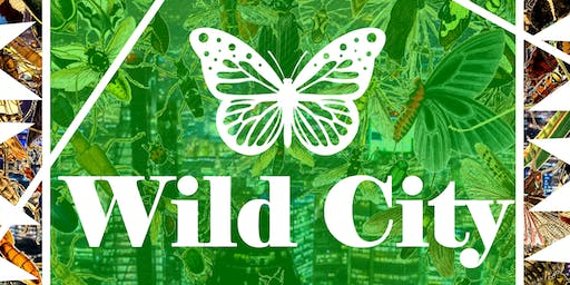 Wild City - family nature and culture trail