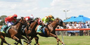 Riverview in Wagga:  A Day at the Races