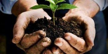Master Gardener Informational Session  3:00-4:00PM