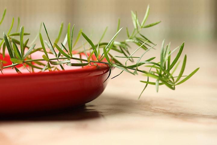 Imagen de Curso de Cultivo de Plantas Aromáticas y Medicinales