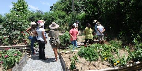 Atelier Jardinage : Concevoir son jardin créole. billets