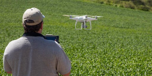Drones in Invasive Species Management