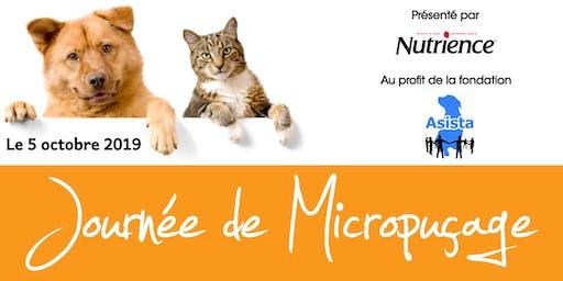 Journée de Micropuçage et Coupe de Griffes