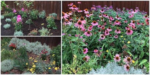 Planning Your Garden: Landscape Design Basics