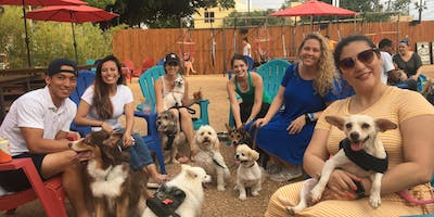 Dog Days of Summer Yappy Hour - Final Event!