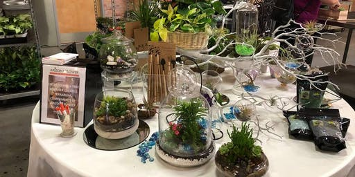 Build Your Own Terrarium Design Class