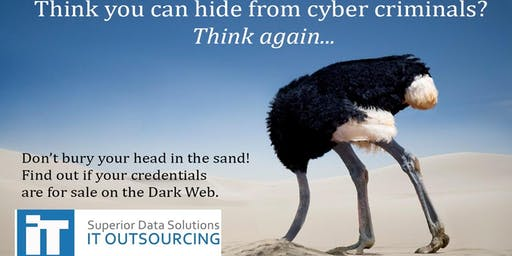 Learn how to protect your business against email phishing and the dark web.