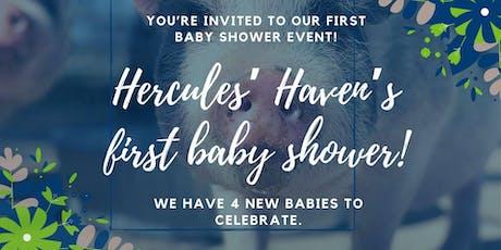 Baby Shower tickets