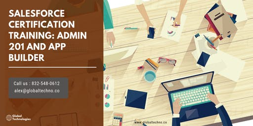 Salesforce Admin 201 & App Builder Certification Training in Winston Salem, NC