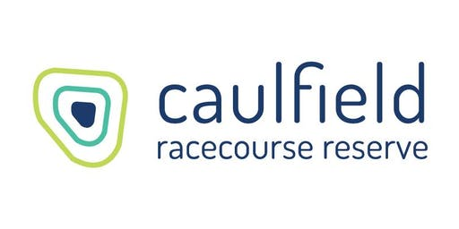 Caulfield Racecourse Reserve Community Issues & Opportunities Workshop