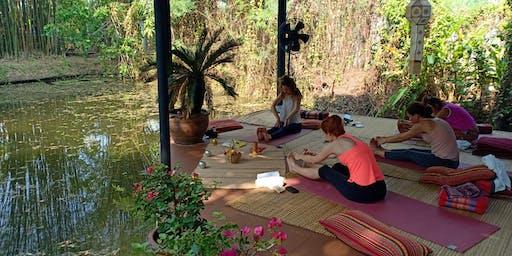 Dreamy Thailand  Yoga  Retreat