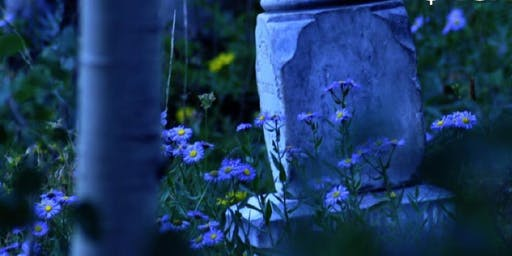 Evening with Spirits- Psychic Medium Trenny Simmons