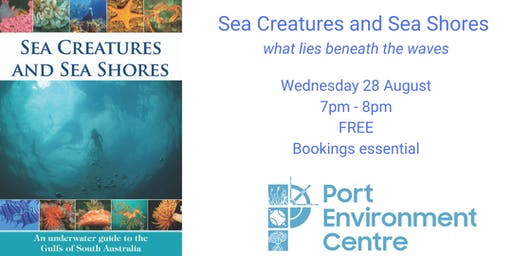 Sea Creatures and Sea Shores: what lies beneath the waves
