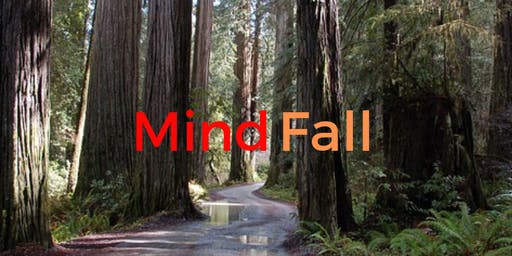 Mindfulness Retreat in  the Redwoods Nov 1-3