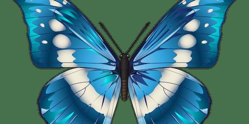 Lemuria Rising - Palmerston North - Chakra Balancing