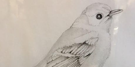 Drawing Techniques for Sketching: Dec 3,10; 2-4pm tickets
