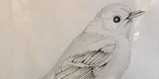 Drawing Techniques for Sketching: Dec 3,10; 2-4pm