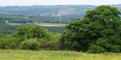 Discover Pont Valley's Heritage tickets