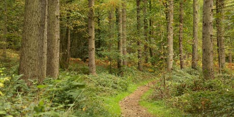 Historic Chopwell Woodland Park tickets